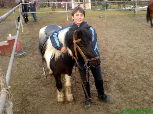 Децата обикват бързо конете